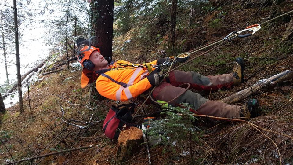 Kletterausrüstung Forst : Kletterkurs uak forstpersonal allgemein unterallmeind